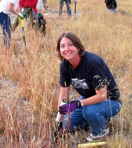 Recent Blog Posts Wnps Blog Botanical Rambles Page 2
